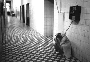 Czech photographer proves patience iskey